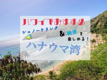 ハワイでおすすめ!絶景シュノーケリングが楽しめるハナウマ湾に行ってきた
